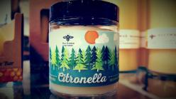 Citrolnella Candle